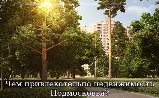 Чем привлекательна недвижимость Подмосковья?